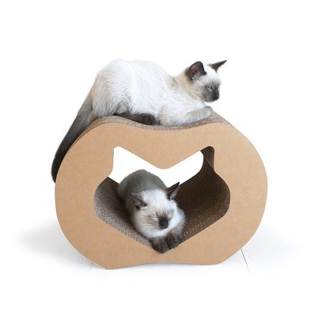 cool cat beds