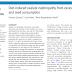 Nefropatia por oxalato induzida por dieta devido ao consumo excessivo de nozes e sementes.