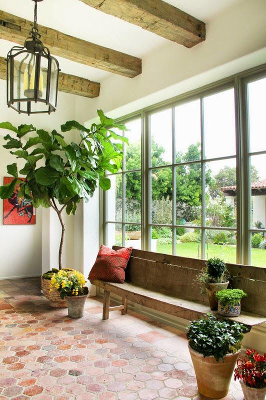 10 Manfaat Tanaman Indoor Bagi Rumah Kita
