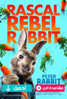 مشاهدة وتحميل فيلم الارنب بيتر Peter Rabbit 2018 مترجم