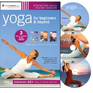 yogavideos4you hatha yoga techniques