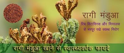 स्वास्थ्यवर्धक रागी - मंडुआ , Health Benefits Ragi Finger Millet in Hindi, रागी के फायदे, ragi ke fayde, mandua ke fayde, मडुआ के फायदे, मडुआ का आटा, mandua ka atta, उत्तराखण्ड का  मंडुआ