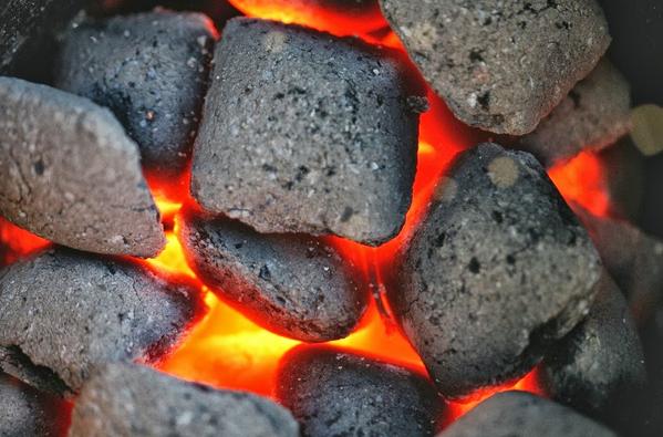 Ahli Geologi : Batu Bara Lamteuba Aceh Terbentuk dari Lahar Gunung Api Purba