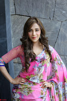Angela Krislinzki Rogue Movie Fame Telugu Actress in Saree Backless Choli 114.JPG