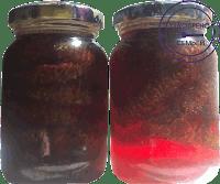 Мед или варенье из зеленых еловых шишек