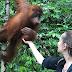 Destinasi Wisata Alam Bukit Lawang Sumatera Utara