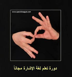 دورة تعلم لغة الإشارة العربية مجانا