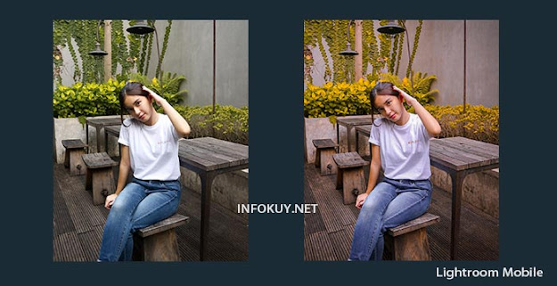 Cara Edit Foto Kekinian di Lightroom