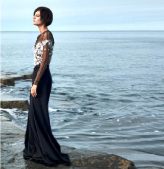 Embellished mesh and crêpe dress, Miu Miu