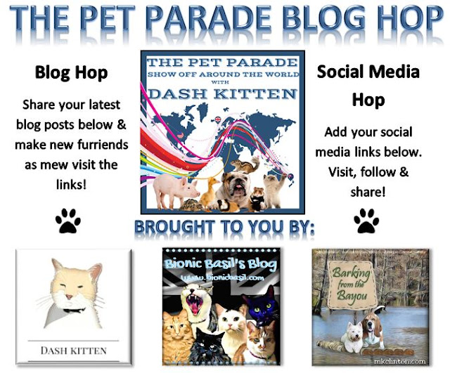 Host Banner  ©BionicBasil® The Pet Parade