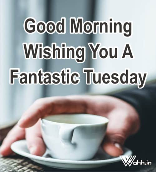 Tuesday-Quotes-Wishes