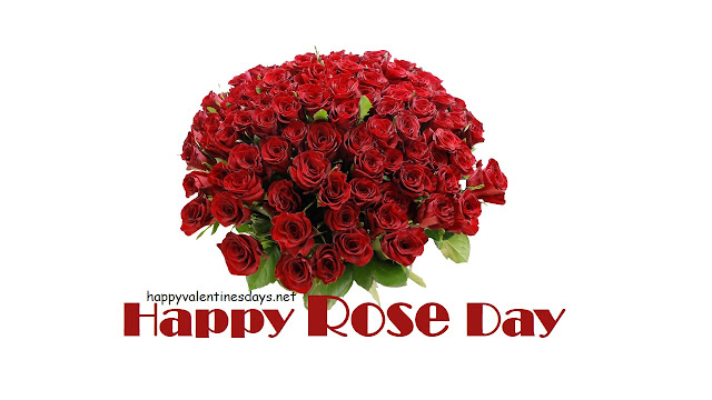 happy rose day, happy rose day wishes, happy rose day greetings, rose day photos, rose day images, rose day, rose day wishes, rose day whatsapp messages, rose day facebook messages, valentine week, valentine day, propose day, chocolate day, teddy day, promise day, hug day, kiss day,  valentine's day