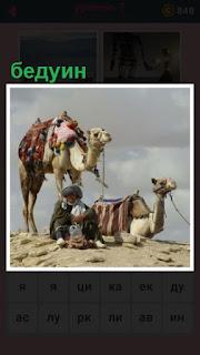 651 слов сидит бедуин в пустыне около верблюдов 7 уровень