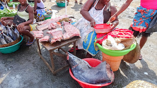 Every fish is available in Sao Tome