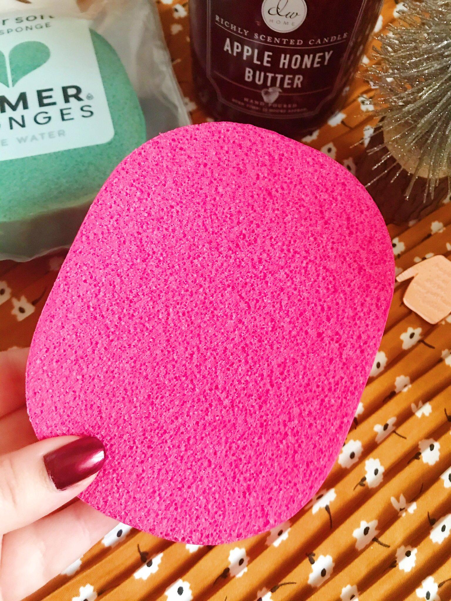 Closeup of pink Ramer sponge
