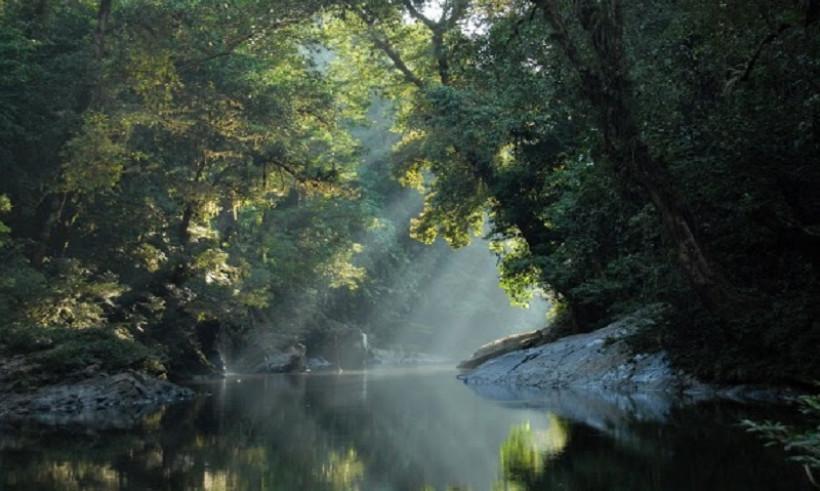 Taman Nasional Betung Kerihun