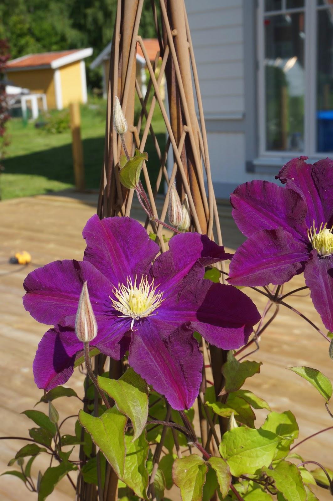 Skärgårdsvillan: vi har njutit av vår altan i sommar.
