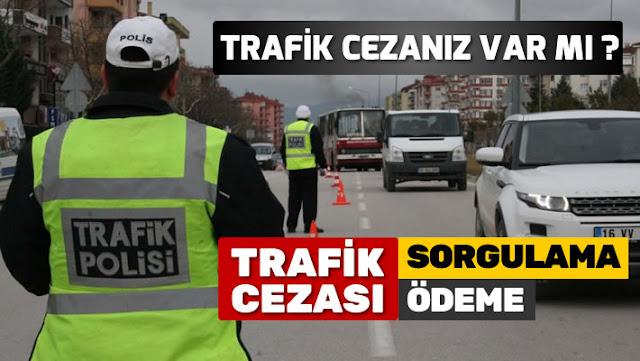 Plakadan Trafik Cezası Borç Sorgulama Nasıl Yapılır? Trafik Cezası Nasıl Ödenir?