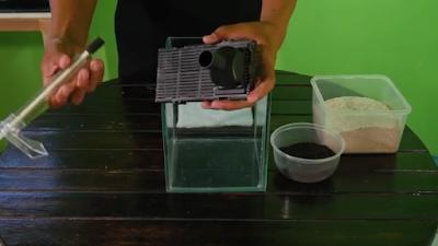 Cara membuat aquascape mini tank air tawar sederhana ...