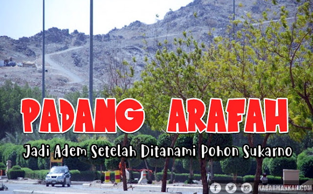 Arafah, Padang Gersang Yang Kini Ditumbuhi Pohon Sukarno