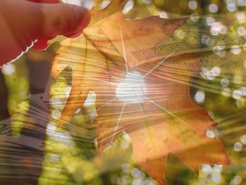 Как привлечь деньги и удачу в сентябре 2021 года: советы по Знаку Зодиака