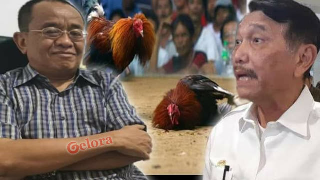 Ayam Sayur Vs Ayam Kinantan