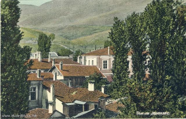 Дел од градот гледан кон југозапад. Разгледница издадена околу 1910 год.