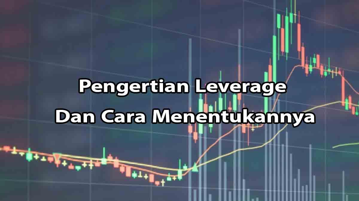 Apa Itu Leverage Dan Cara Menentukan Leverage Trading Forex Yang Aman Aldanpost Com