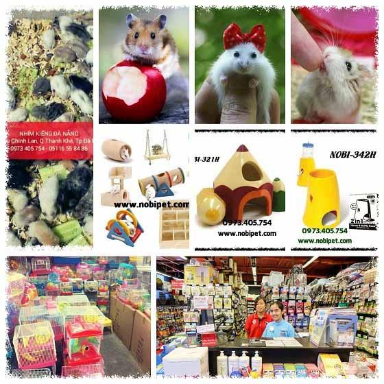 shop-hamster-nobipet-ban-chuot-canh-o-da-nang