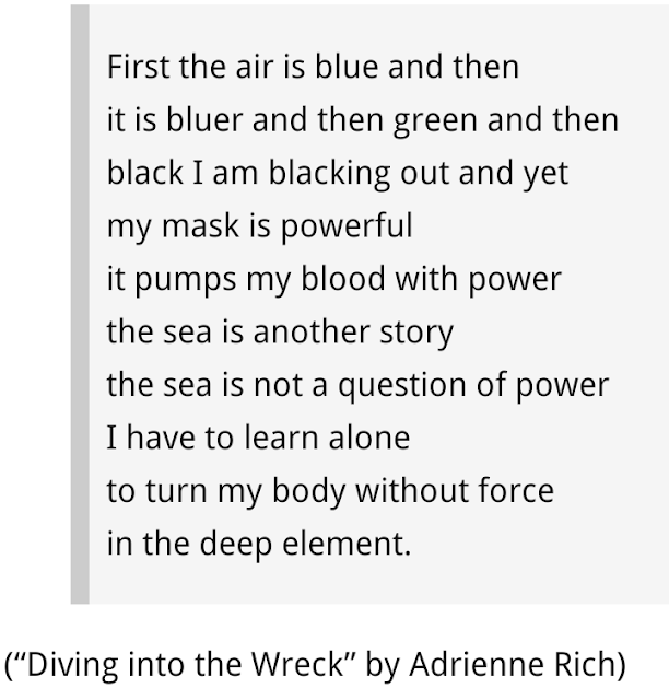 """Diving into the Wreck"" by Adrienne Rich - Examples of Free Verse Poem"