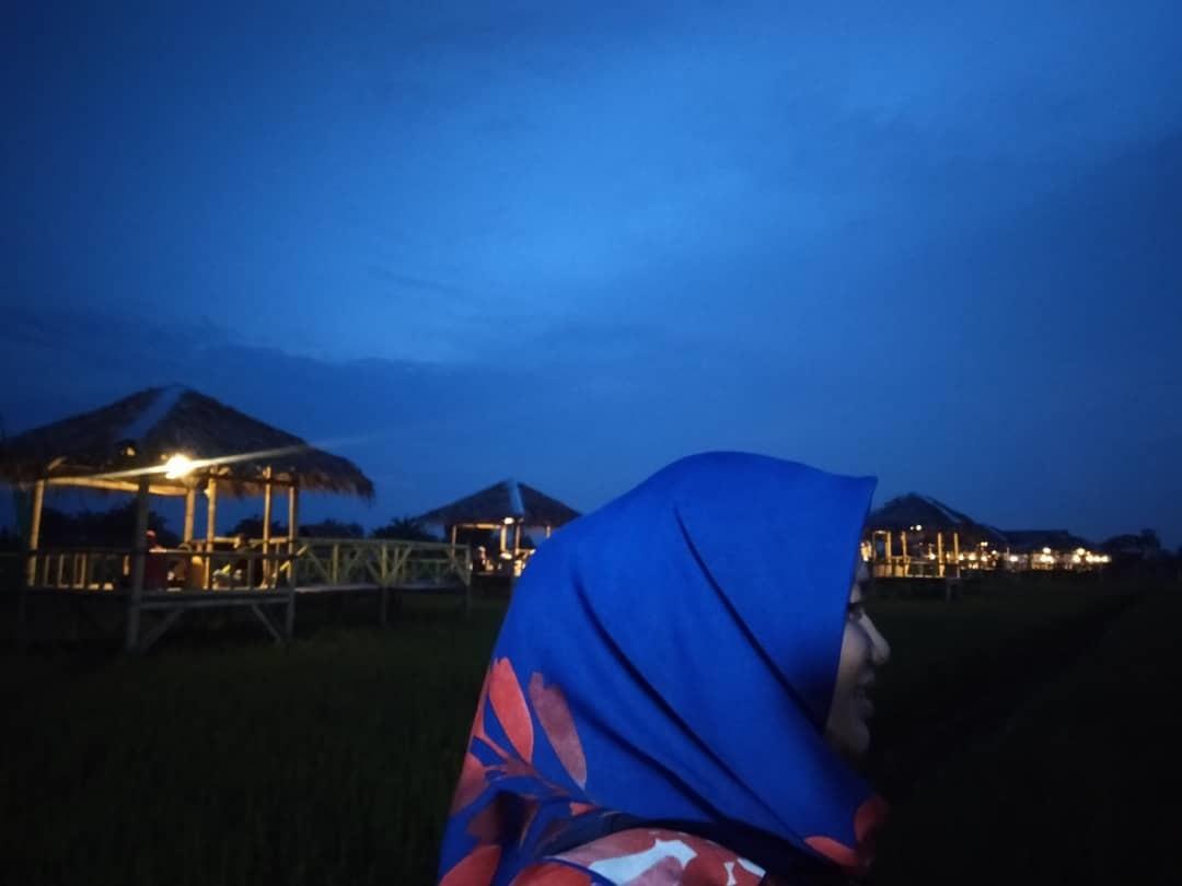 Lokasi Wisata Sawah Pematang Johar