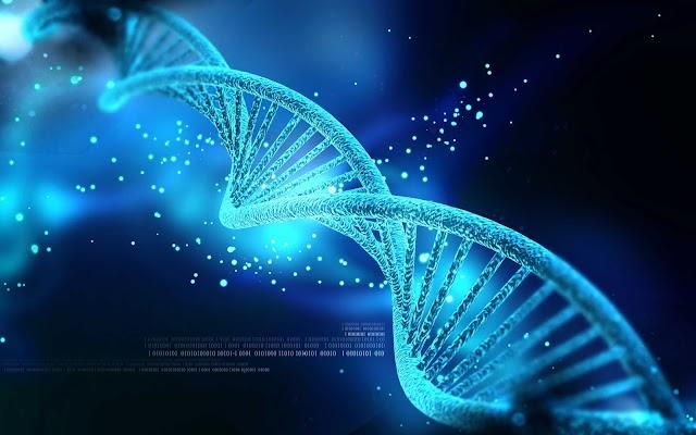 Πόσο περιορίζουν τα γονίδια μας την ελεύθερη βούληση;