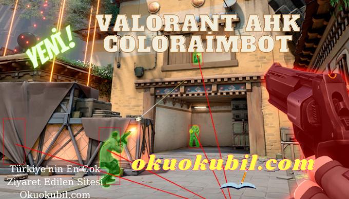 Valorant AHK Coloraimbot TriggerBot AimBot NoRecoil Hileli Son Sürüm 2021