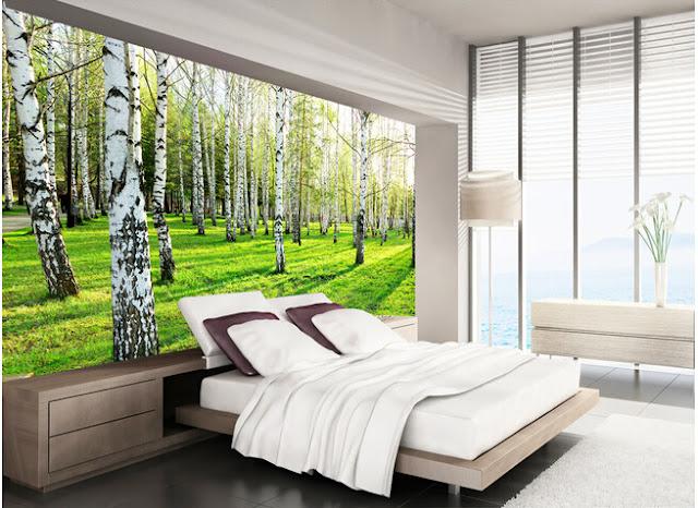 natur tapet björkträd sovrum fototapet trädstammar björkstammar