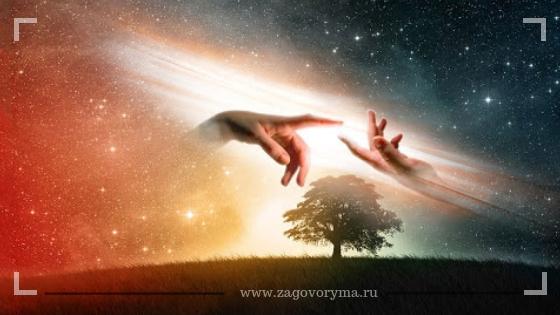 Три знака Зодиака, которые вскоре могут обрести родственную душу