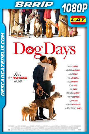 Dog Days (2018) BRrip 1080p Latino – Ingles