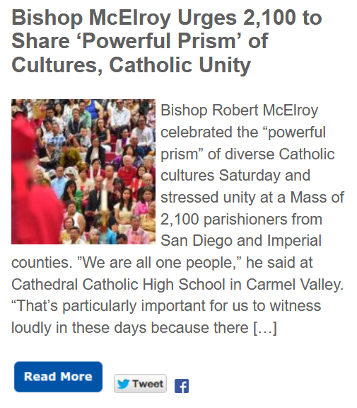 https://timesofsandiego.com/life/2019/06/08/bishop-mcelroy-urges-2100-to-share-powerful-prism-of-cultures-catholic-unity/