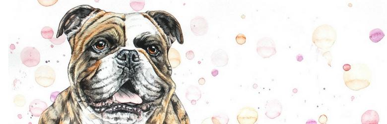 Tierportrait: Hund malen lassen