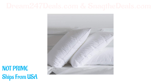 70%OFF goose Down feather pillow