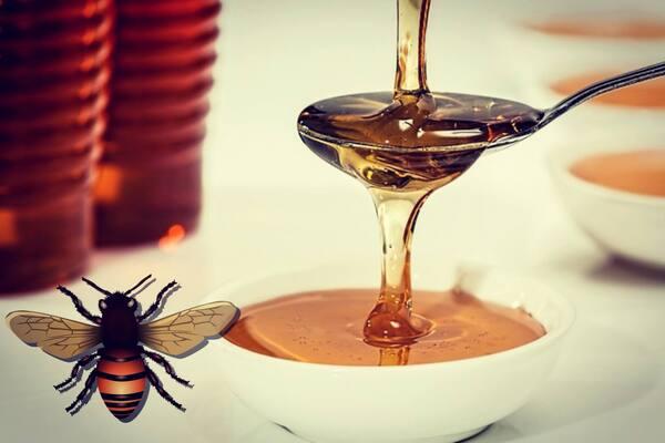 6 فوائد لعسل النحل الطبيعي لا تعرفها