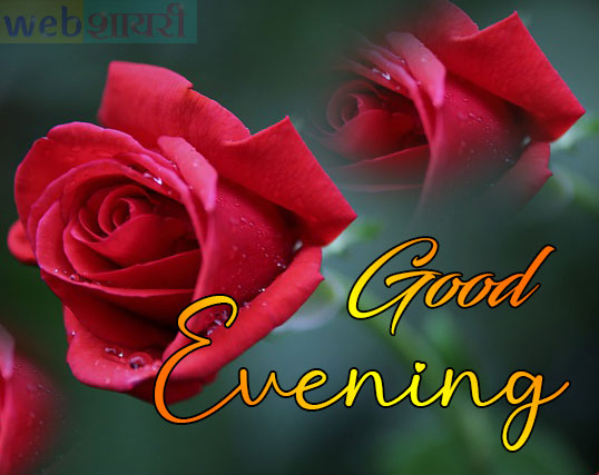 Latest Good Evening Photos , images and wallpapers wishes download