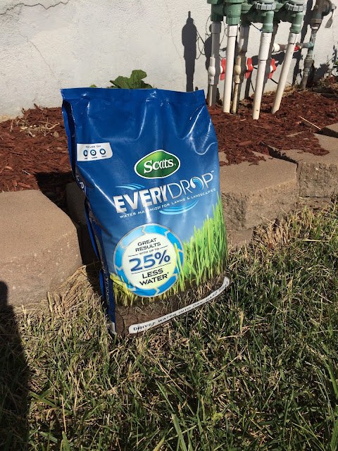 Scotts® EveryDrop™ Water Saver Lawn Care by BeckyCharms