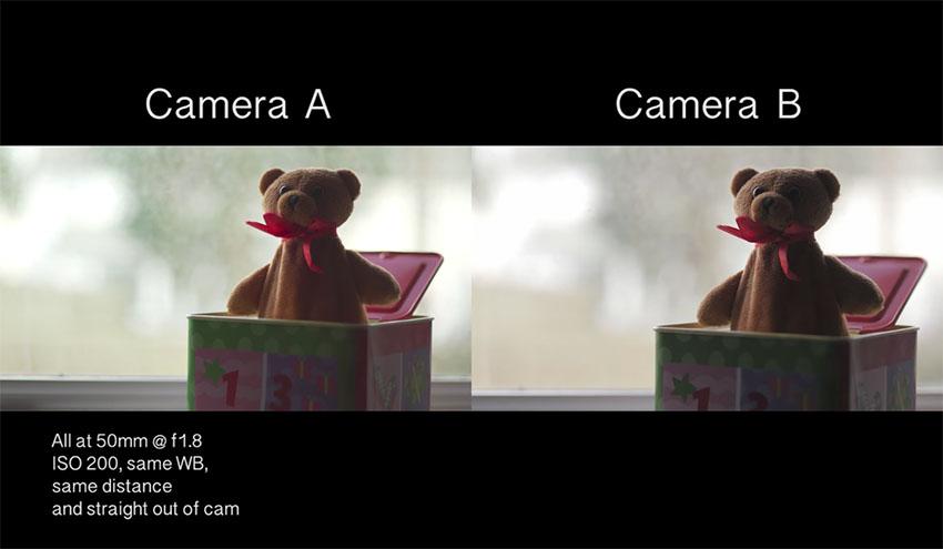 Сравнение полнокадровой и камеры и фотоаппарата системы Micro4/3