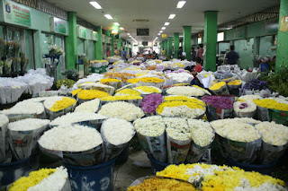 flower-markets-rawabelong