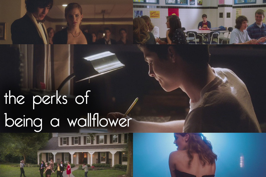 the perks of being a wallflower essay perks of being a wallflower official trailer the perks of quiz worksheet perks of being a