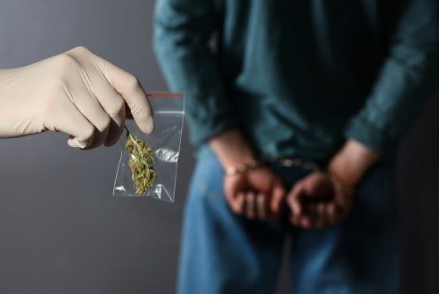 Majdnem két kilogramm marihuánát találtak egy budapesti dílernél és vevőjénél