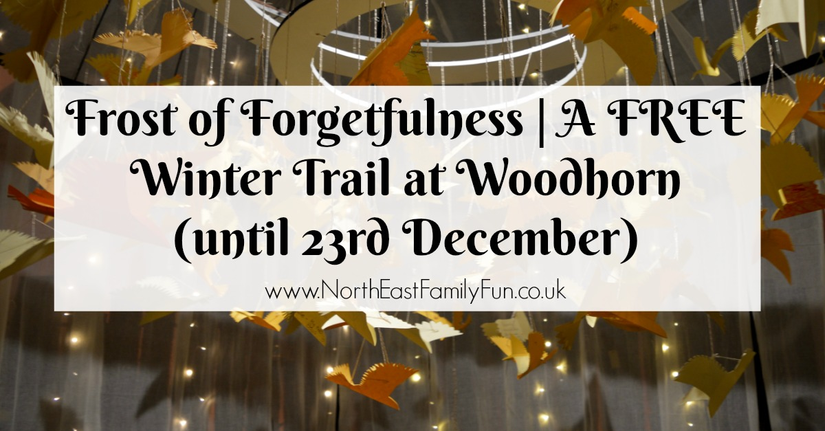 Frost of Forgetfulness | A FREE Winter Trail at Woodhorn (until 23rd December)