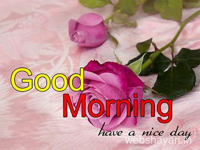 good morning images good morning gulab ke fool