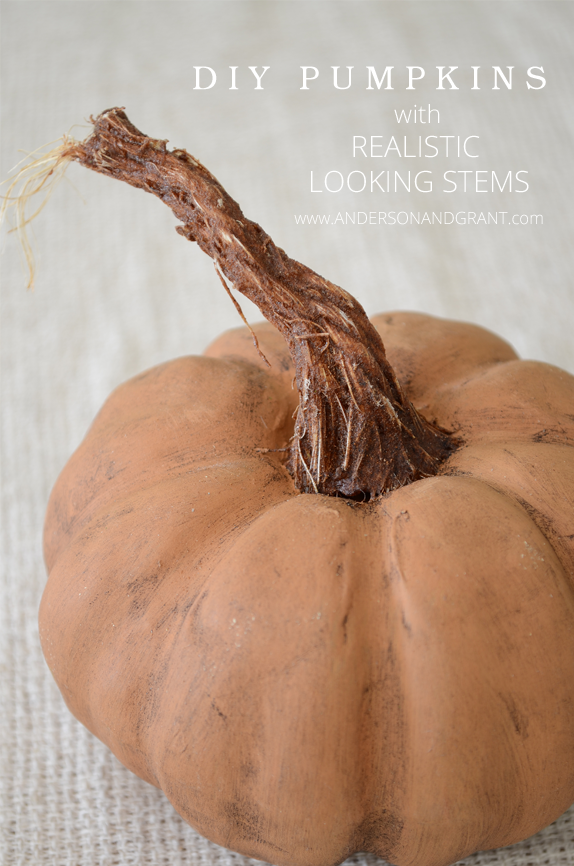 Check out this amazing DIY post on creating Pumpkins with Realistic Looking Stems | www.andersonandgrant.com