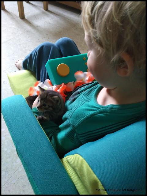 blog famille chaton lunii